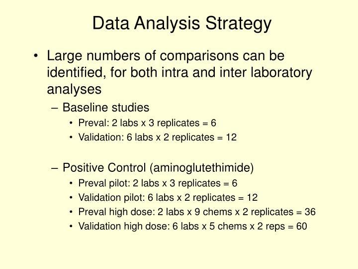 Data Analysis Strategy