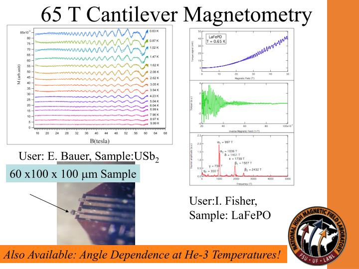 65 T Cantilever Magnetometry