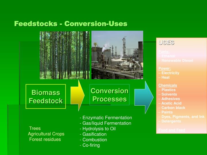 Feedstocks - Conversion-Uses