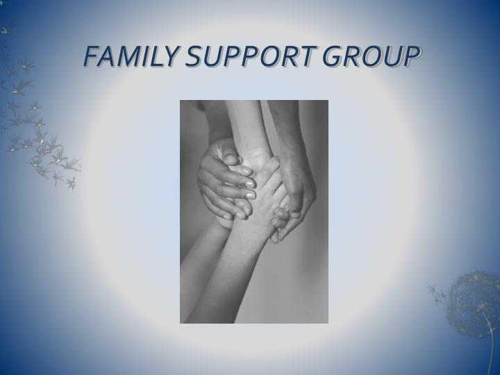 family support group n.