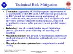 technical risk mitigation