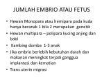 jumlah embrio atau fetus