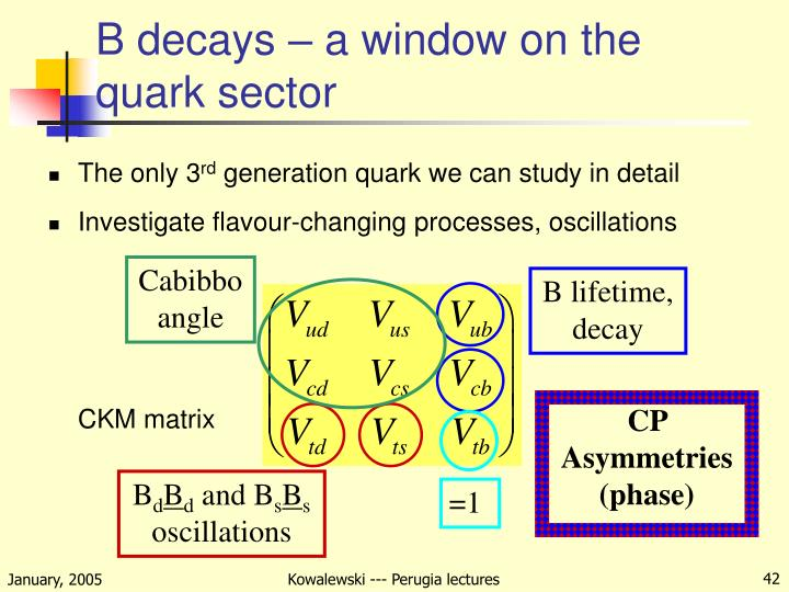 B decays – a window on the quark sector