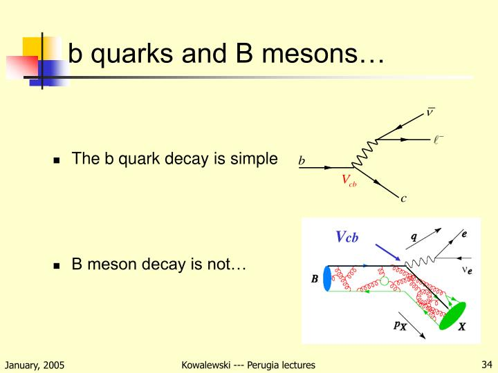 b quarks and B mesons…