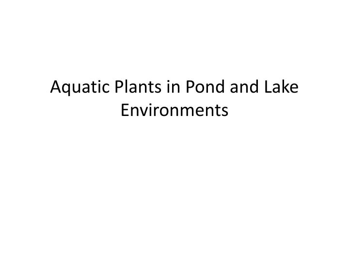 aquatic plants in pond and lake environments n.