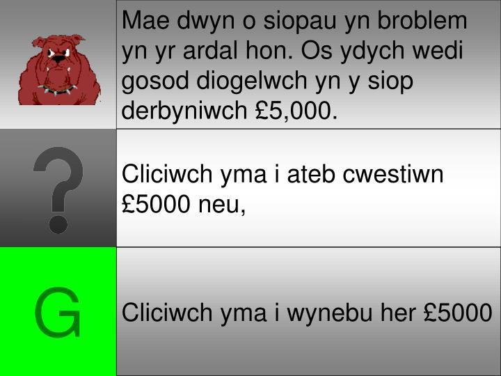 Mae dwyn o siopau yn broblem yn yr ardal hon. Os ydych wedi gosod diogelwch yn y siop derbyniwch £5,000.