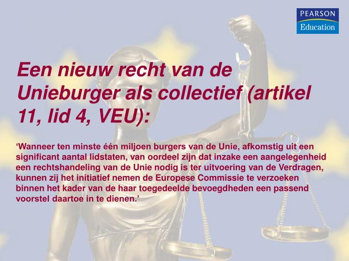 Een nieuw recht van de Unieburger als collectief (artikel 11, lid 4, VEU):