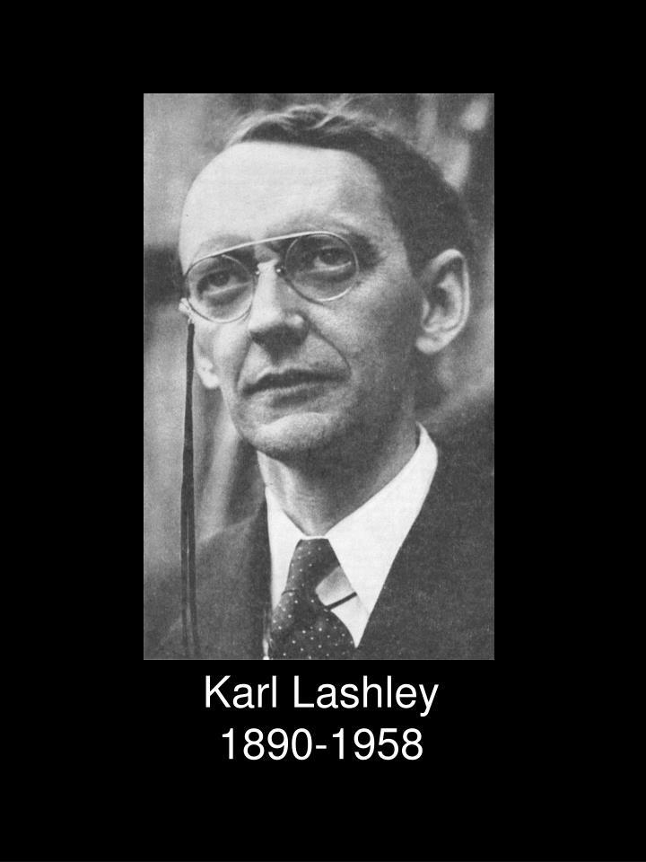 Karl Lashley