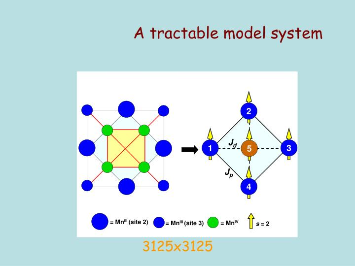 A tractable model system