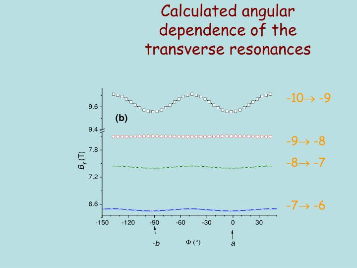 Calculated angular dependence of the transverse resonances