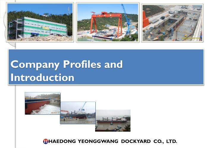 Company profiles and introduction