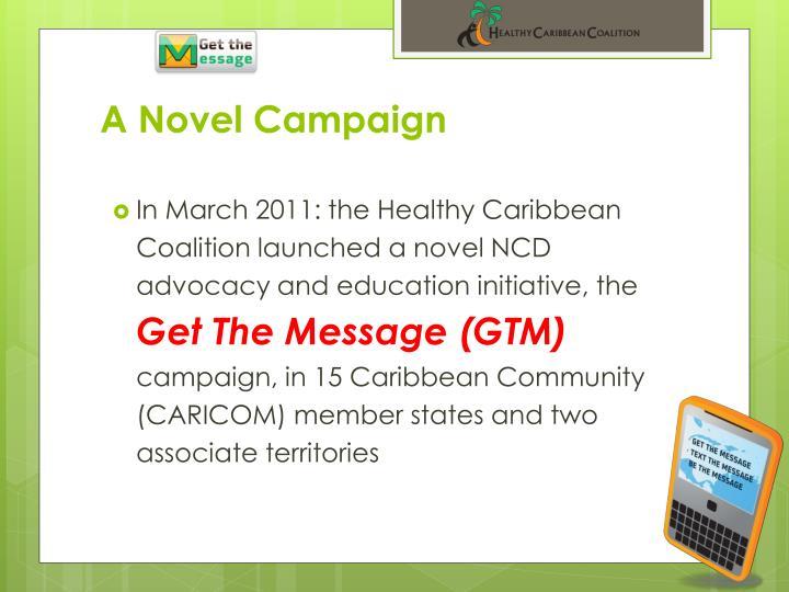 A novel campaign
