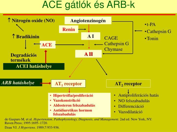 ACE gátlók és ARB-k