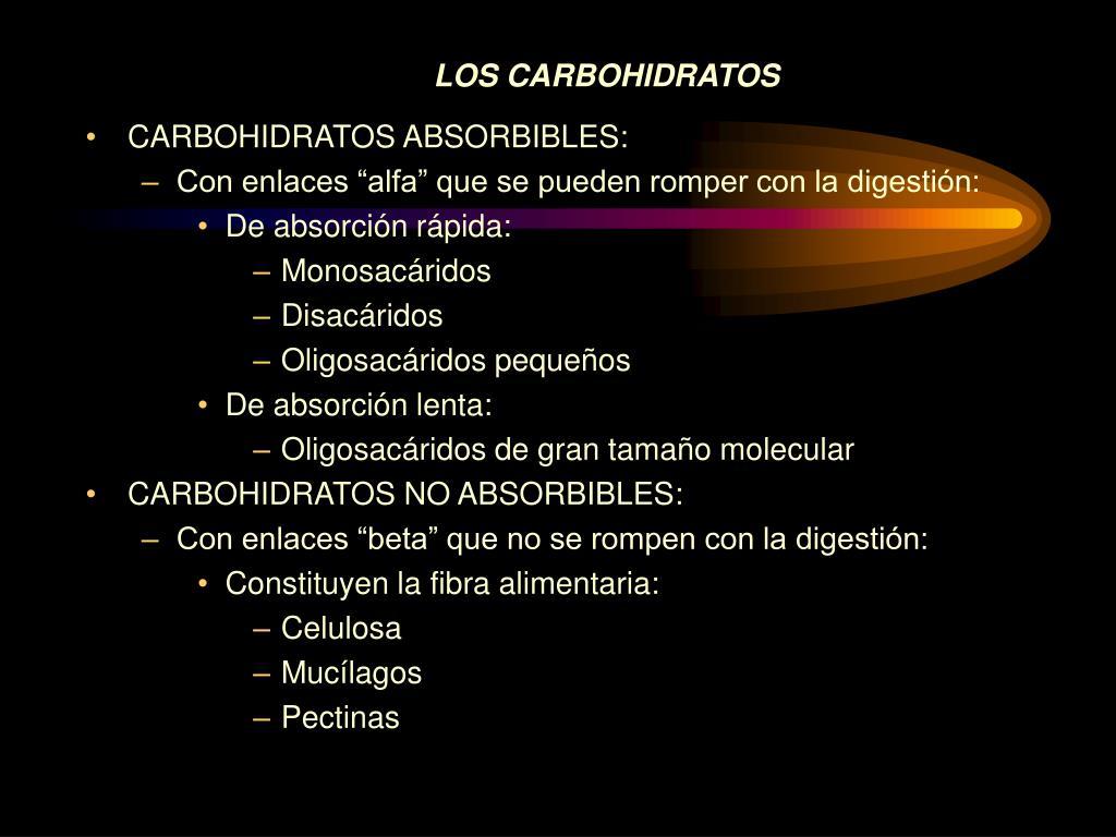 Metabolismo en nutricion