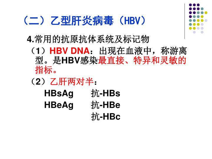 (二)乙型肝炎病毒(