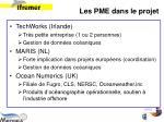 les pme dans le projet1