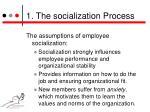 1 the socialization process1