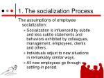 1 the socialization process2