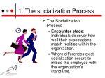 1 the socialization process5