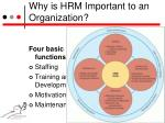 why is hrm important to an organization3