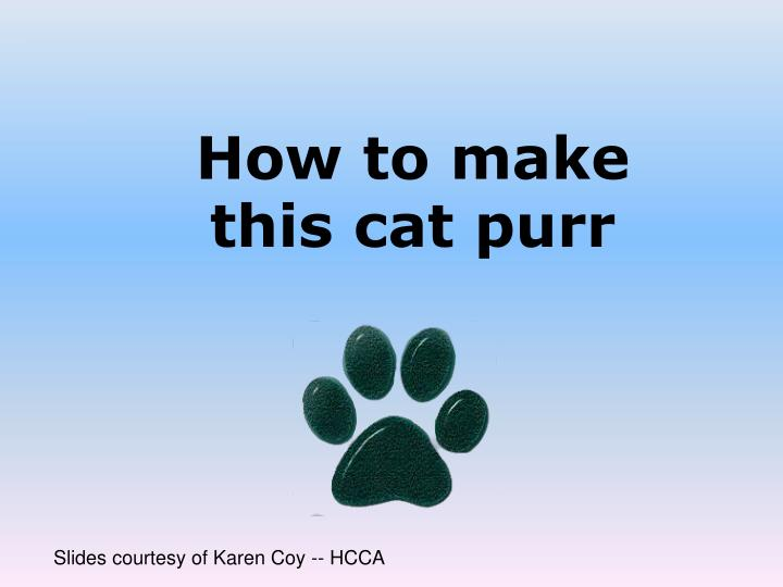 how to make this cat purr n.
