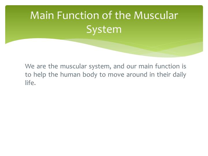 Ppt The Muscular System Powerpoint Presentation Id3560758