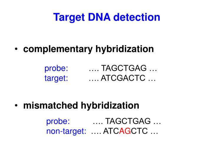 Target DNA detection