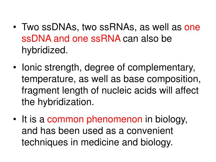 Two ssDNAs, two ssRNAs, as well as