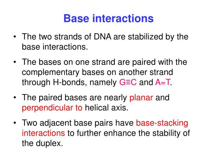Base interactions