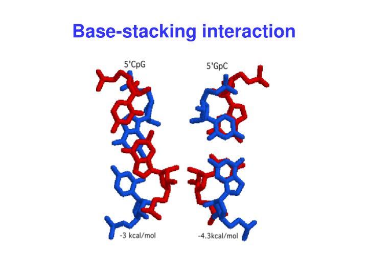 Base-stacking interaction