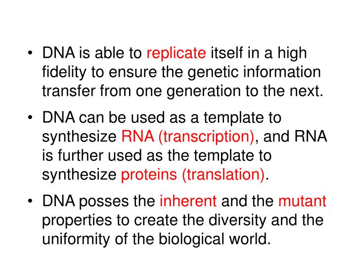 DNA is able to