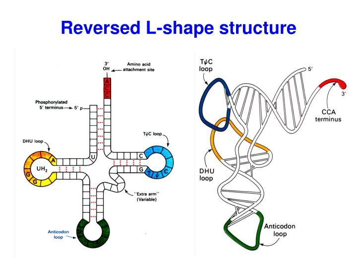 Reversed L-shape structure