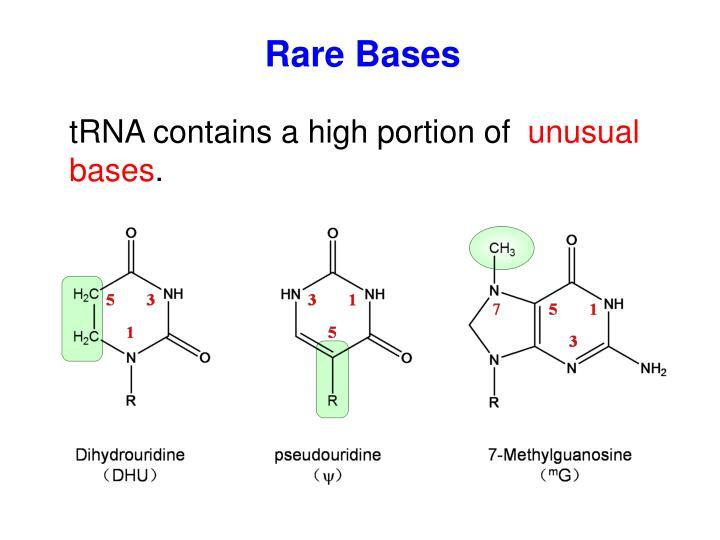 Rare Bases