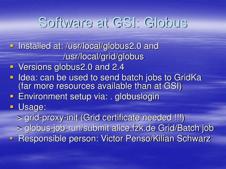 Software at GSI: Globus