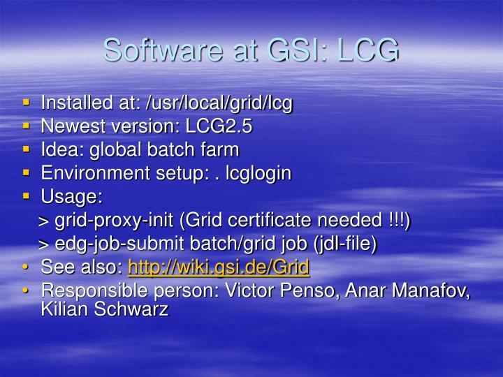 Software at GSI: LCG
