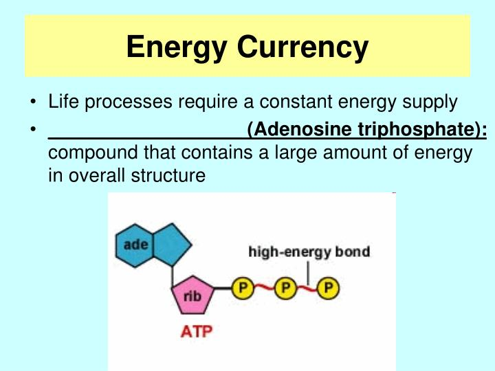 Energy Currency