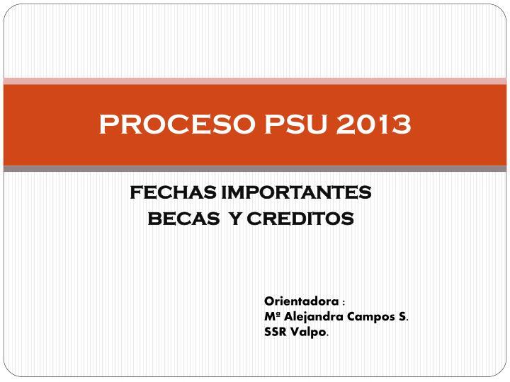 proceso psu 2013 n.