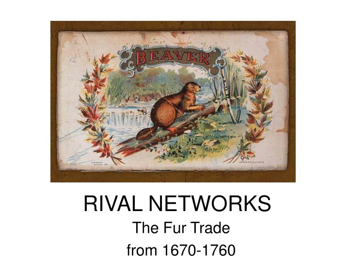 rival networks n.