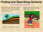 finding and describing horizons1