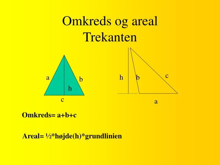 Omkreds og areal trekanten