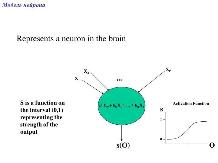 Модель нейрона