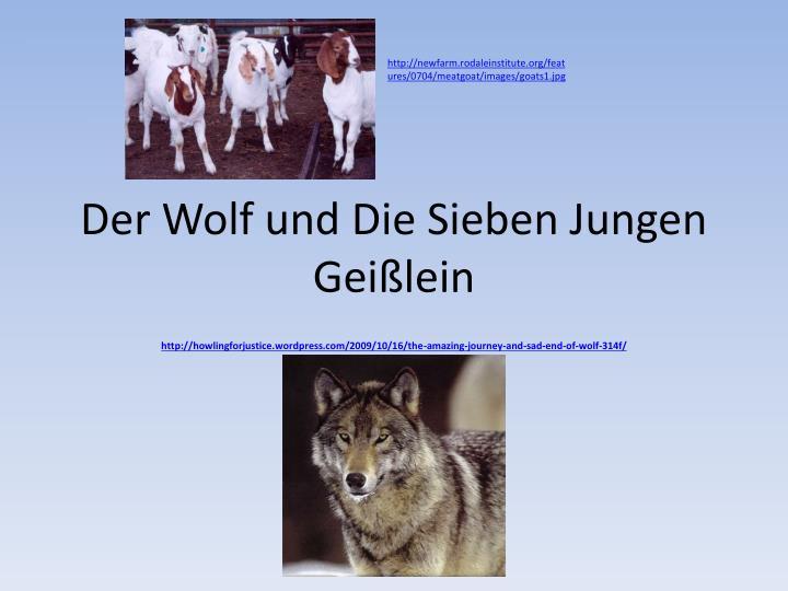 Der wolf und die sieben jungen gei lein
