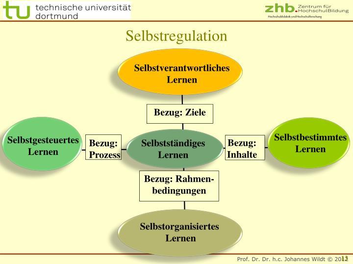 Selbstregulation