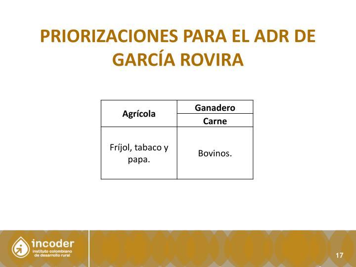 PRIORIZACIONES para el Adr de García Rovira