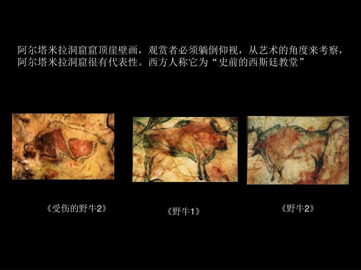 阿尔塔米拉洞窟窟顶崖壁画,观赏者必须躺倒仰视,从艺术的角度来考察,