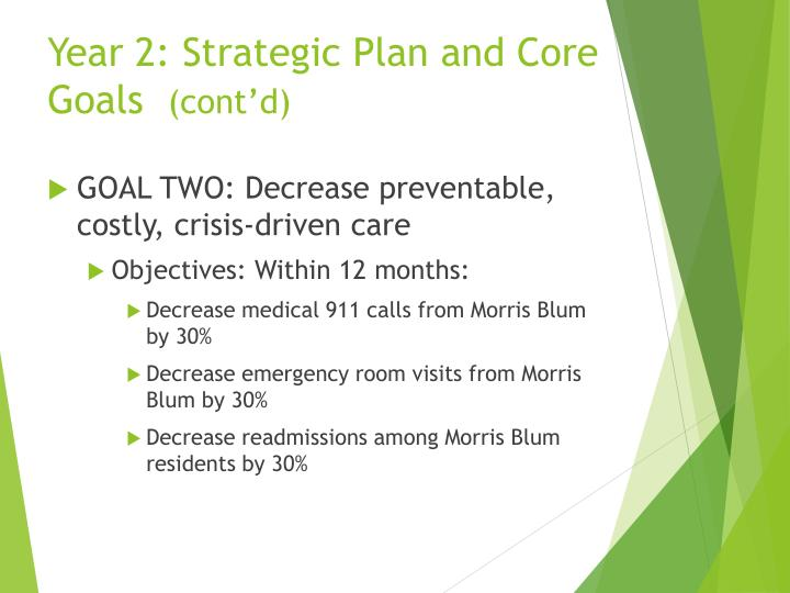Year 2: Strategic Plan and Core Goals
