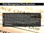 risk management fine structure