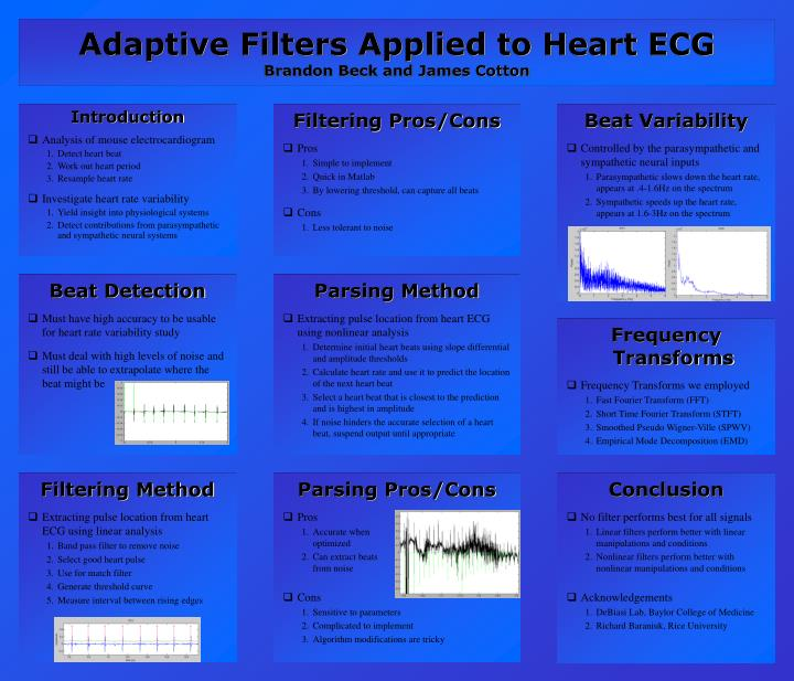 PPT - Adaptive Filters Applied to Heart ECG Brandon Beck and