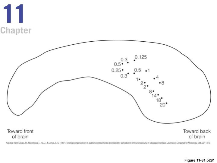 Figure 11-31 p281