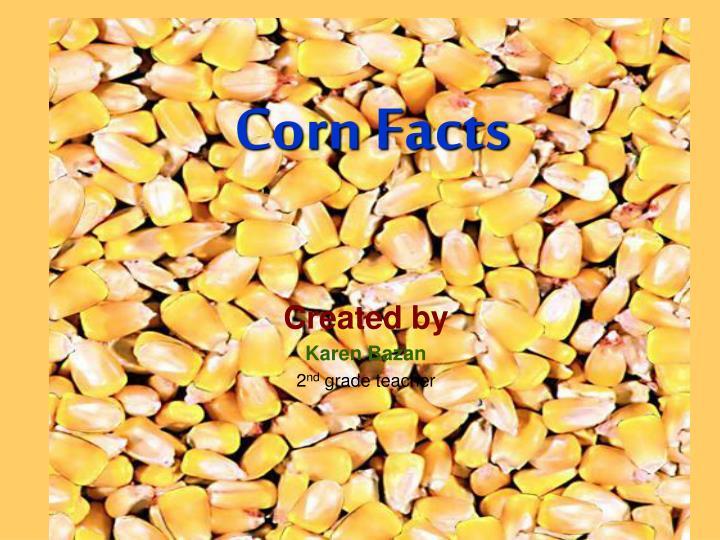 corn facts n.